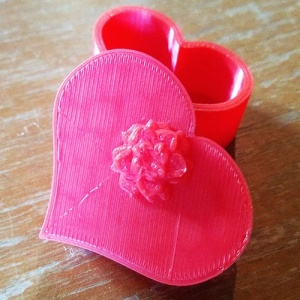 heart-shaped-box-pic3